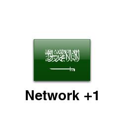Network Plus 1 Edition